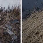 Den blå kajakrute koster nære værdifulde naturoplevelser (april 2014)