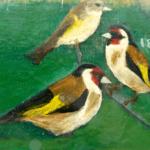 Fuglelivets skiften fra sommer til vinter (oktober 2020)
